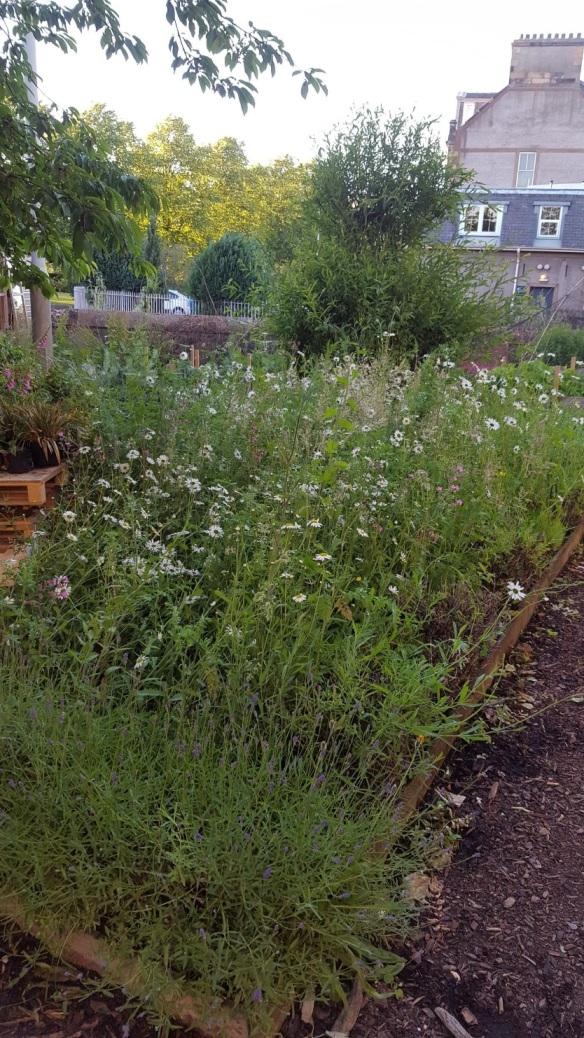 perth garden
