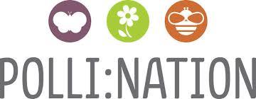 pollination logo