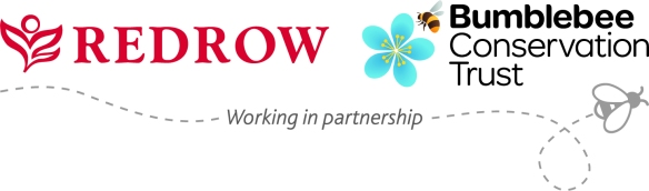 redrow_bumblebee_partnership
