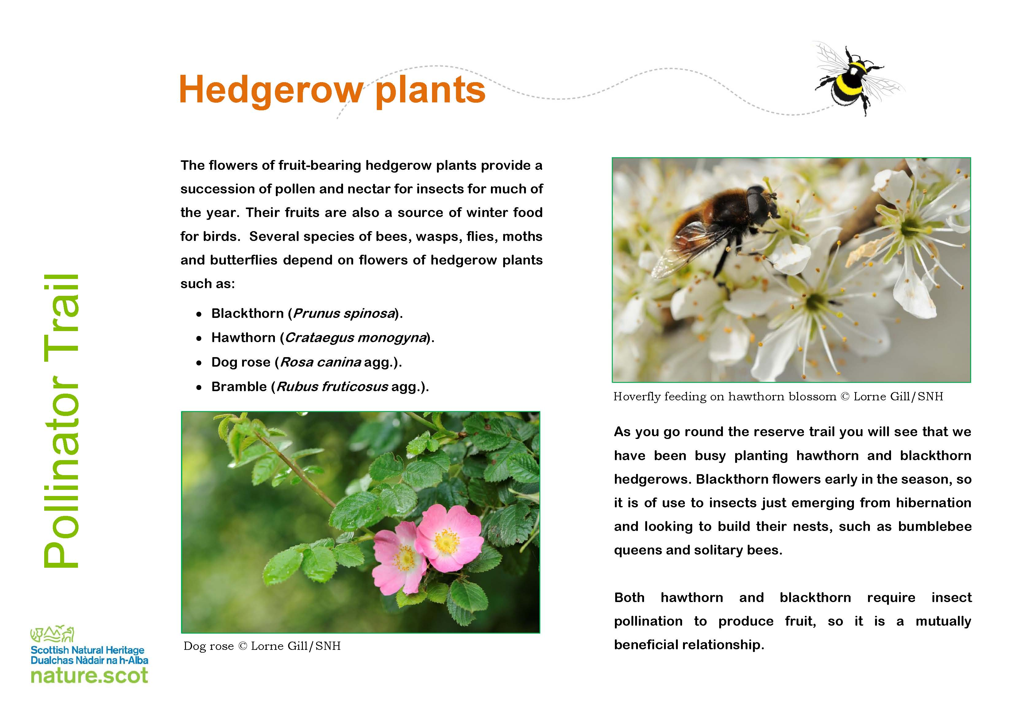 NNR Pollinator Trial signs all included - 29 03 2019 (A2905974) - Copy_Page_2