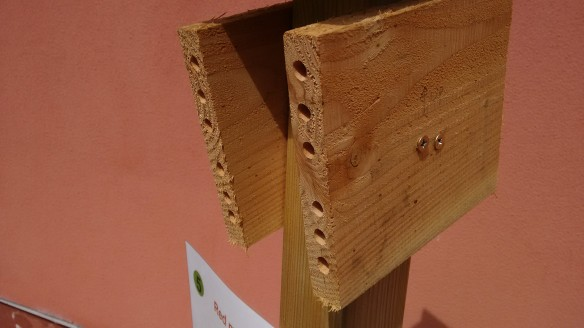 I - bees - solitary - nest - wood block_2