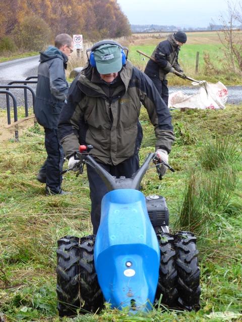 volunteers cutting and raking the meadow
