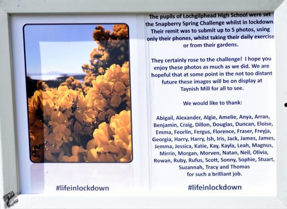 Pollinator Blog August 2020 _JPEG Image Height 720px_m208436